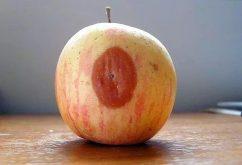 Nguyên tắc quả táo hỏng – John C. Maxwell
