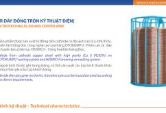 Catalogue đặc tính kỹ thuật Dây & cáp điện Trần Phú